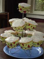 Cupcakes_8