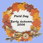 Field_day_button_2_4