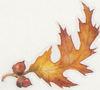 Leaf5_4