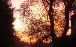 November_morning