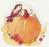 Pumpkin_bird_2