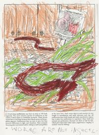 Worm_coloring